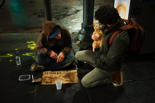 猫とホームレス